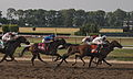 120px-2010_Belmont_Stakes_finish