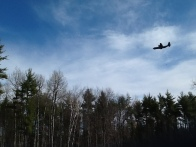 plane over pond