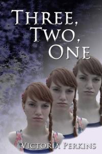 E-Book Cover_2 Victoria Perkins