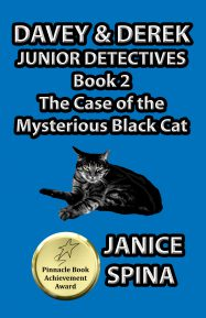 The Case of the Mysterious Black Cat